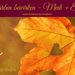 (NP24) Was Farben bewirken – eine Kombination aus Meditation und Entspannungsreise